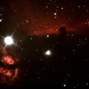 Horsehead/Flame Nebulae (in progress),                                John Kroon