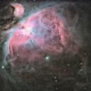 M42,                                Gobart