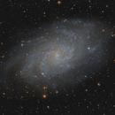 M 33 LRGB,                                Paul Muskee