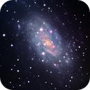 NGC 2403,                                Tim Stone