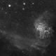 Flaming Star Nebula,                                MeldorAstro