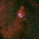 NGC2264 Cone Nebulae,                                Jacques Kieffer