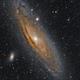 Andromeda Galaxy M31,                                Nathan Morgan (nm...