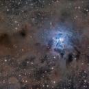 The Iris Nebula (NGC 7023),                                Luca Marinelli