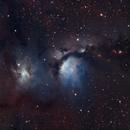 M78,                                Andrew Barton
