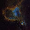 IC 1805, The Heart Nebula,                                Michael Kolstad