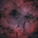 Elephant's Trunk Nebula,                                Frank McMahon