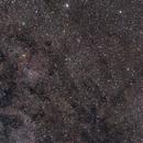IC 1396 Region,                                Jan Curtis