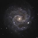 NGC 3184,                                Gary Imm