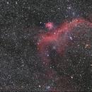 IC 2177 Seagulls Nebula,                                Denis Kan
