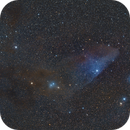 The Blue Horsehead Nebula,                                Giorgio Ferrari