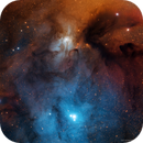 IC4603, IC4604 and Dark clouds in Rho Ophiuchi,                                ggt
