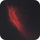 California nebula from Siwa Oasis /Egypt,                                Mohamed Usama Ismail