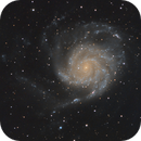 "M101 with RASA 11"",                                Ray's Astrophotog..."