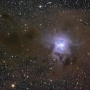 NGC 7023 - The Iris Nebula,                                James Pelley