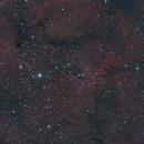 IC1396: Elephant Trunk,                                mads0100