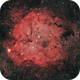 IC 1396 - The Elephant Trunk,                                mxpwr