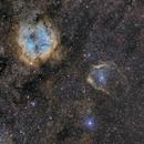 IC1396 - SH2-129 - OU4,                                ZlochTeamAstro