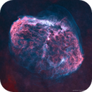 NGC 6888 •Crescent Nebula in HOO (Starless),                                Douglas J Struble