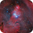 In the Vicinity of the Cone Nebula (Ha, OIII, RGB),                                Ray Liao