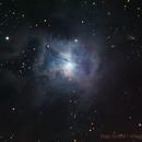 NGC 7023 - The Iris Nebula,                                Hap Griffin