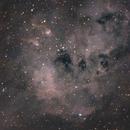 Tadpole Nebula IC 410,                                Ryan Betts