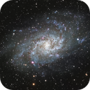 M33 Triangulum Galaxy,                                Larry S