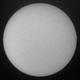 Sol 25-3-2020 Ha mono,                                Steve Ibbotson