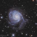 M101 Pinwheel Galaxy in LRGB,                                Kayron Mercieca