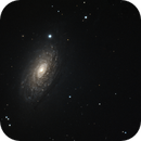 The Sunflower Galaxy,                                Don Curry