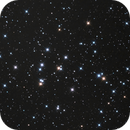 M44, the Beehive Cluster,                                John Favalessa