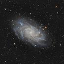 M33,                                Vincent Savioz