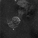 Jelly Fish Nebula,                                Shailesh Trivedi