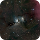 M78 in Orion,                                Patrick Hsieh