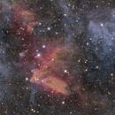 LDN 1634 Bright-Rimmed Cloud in Orion,                                Jarrett Trezzo