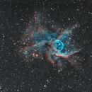Thor Nebula NGC 2359,                                NelsonAstrofoto
