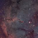 IC 1396,                                Olivier Meersman
