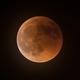 Lunar Eclipse 2018,                                Robert Eder