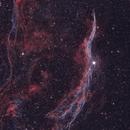 Western Veil Nebula (NGC 6960),                                Dan Gallo