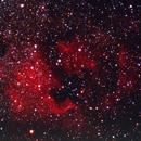 NGC 7000 : North American Nebula - Olympus OM1 - E200 Film,                                Eric-P