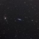 IC4236 Barred spiral galaxy,                                Massimo Miniello