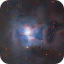 NGC7023 IRIS,                                Joel85
