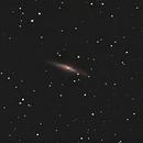 NGC-2683 in Lynx,                                Bob Scott