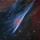 NGC 2736, the Pencil Nebula aka Herschel's Ray,                                Rick Stevenson