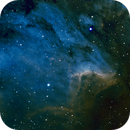 IC 5070 Pelican Nebula,                                T Young