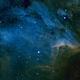 IC 5070 Pelican Nebula,                                T Young