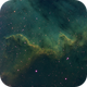 The Cygnus Wall (NGC 7000),                                Jussi Saarivirta