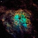 The Tadpoles Nebula - SHO Narrowband,                                gmvtex