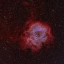 Sharpless in Monoceros - (Sh2-275) - The Rosette Nebula in H-HO-O,                                G400