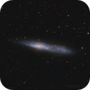 NGC 55,                                Ignacio Diaz Bobillo